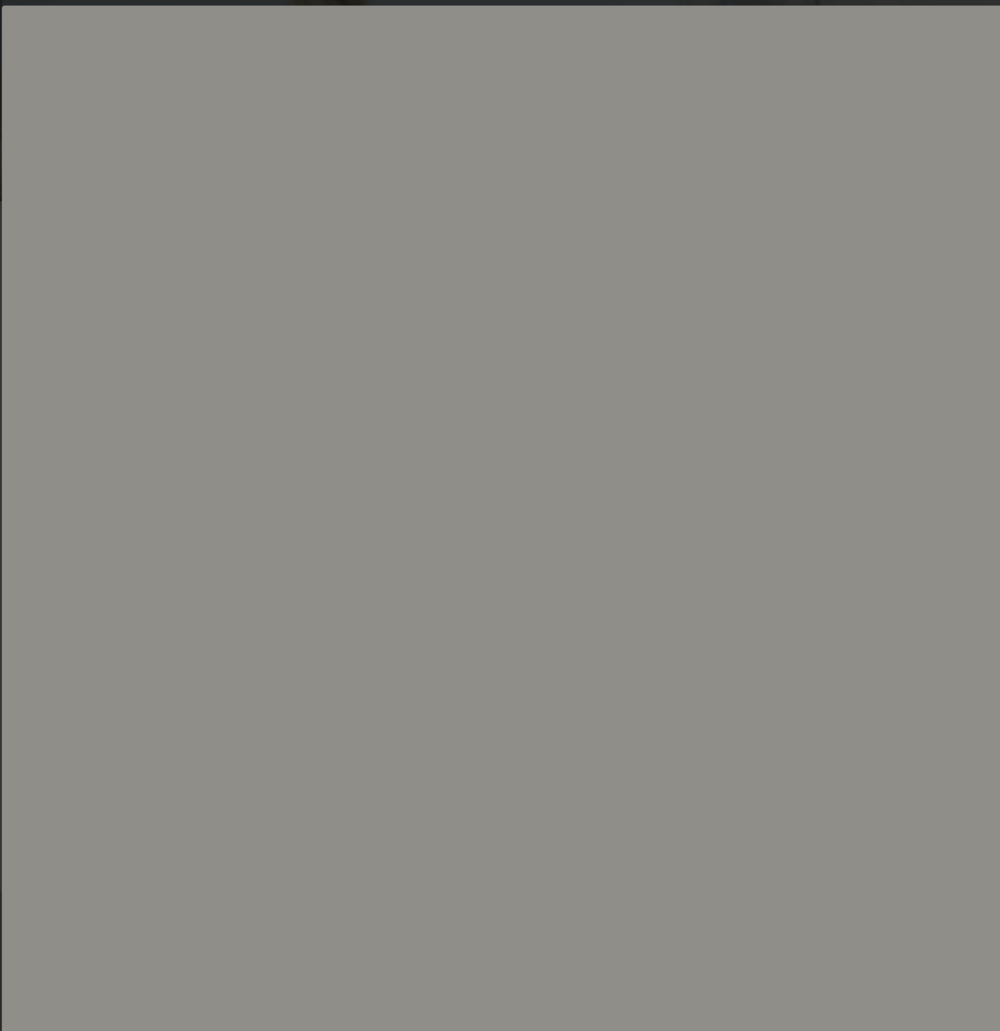 Platinum Grey 12115