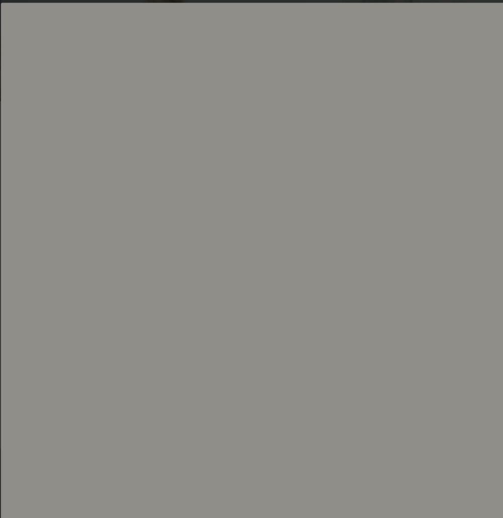 Platinum Grey U12115