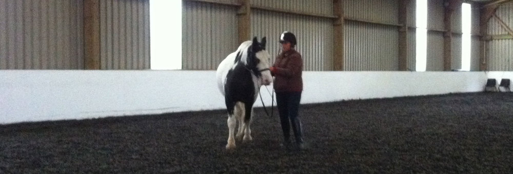 Jade & Mickey training at Heather Moffetts