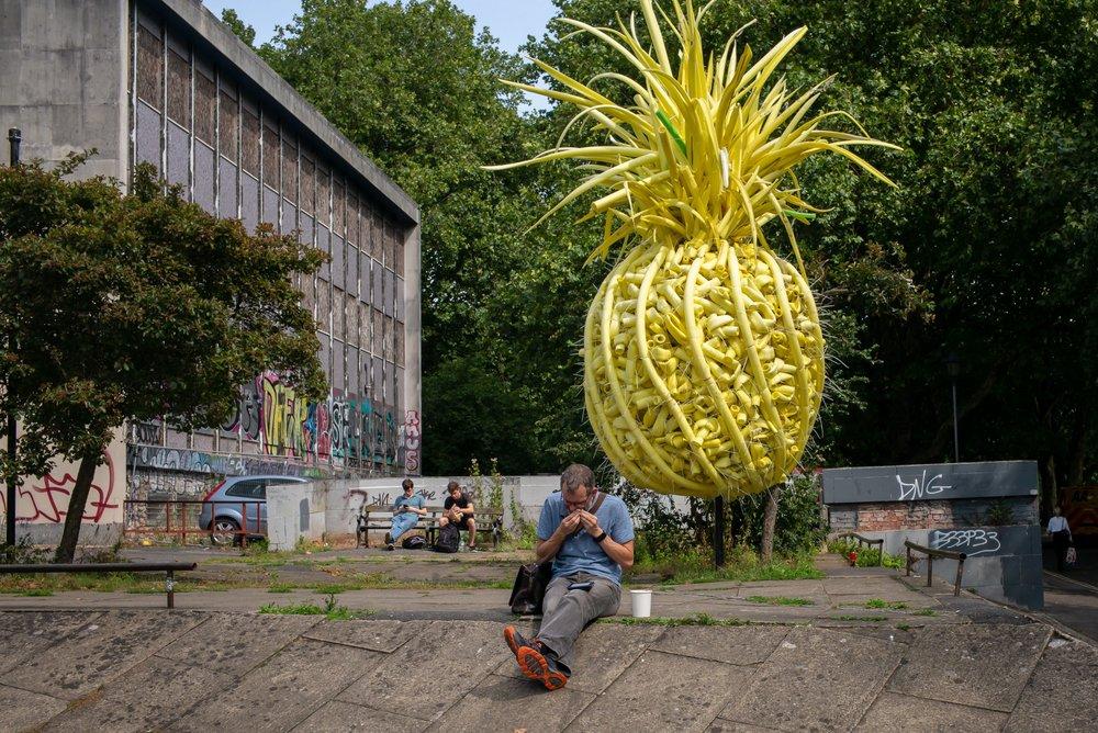 Bristol Pineapple Raw.jpg