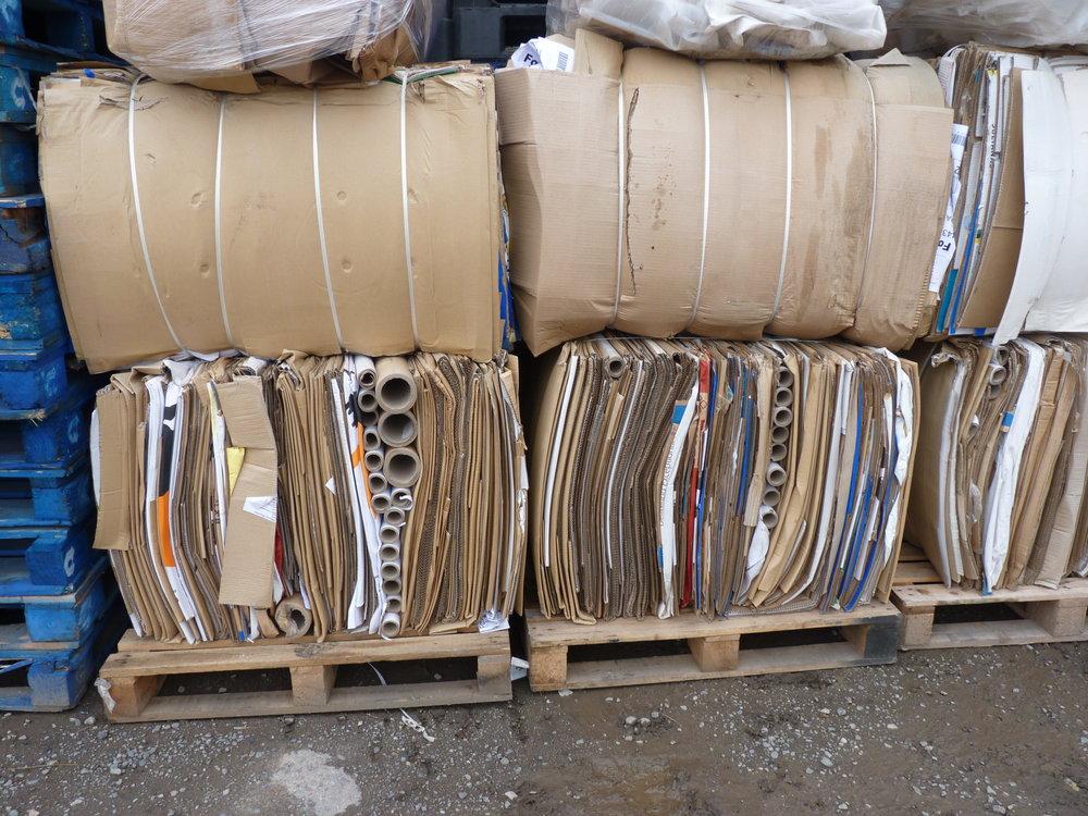 Recycling (3).JPG