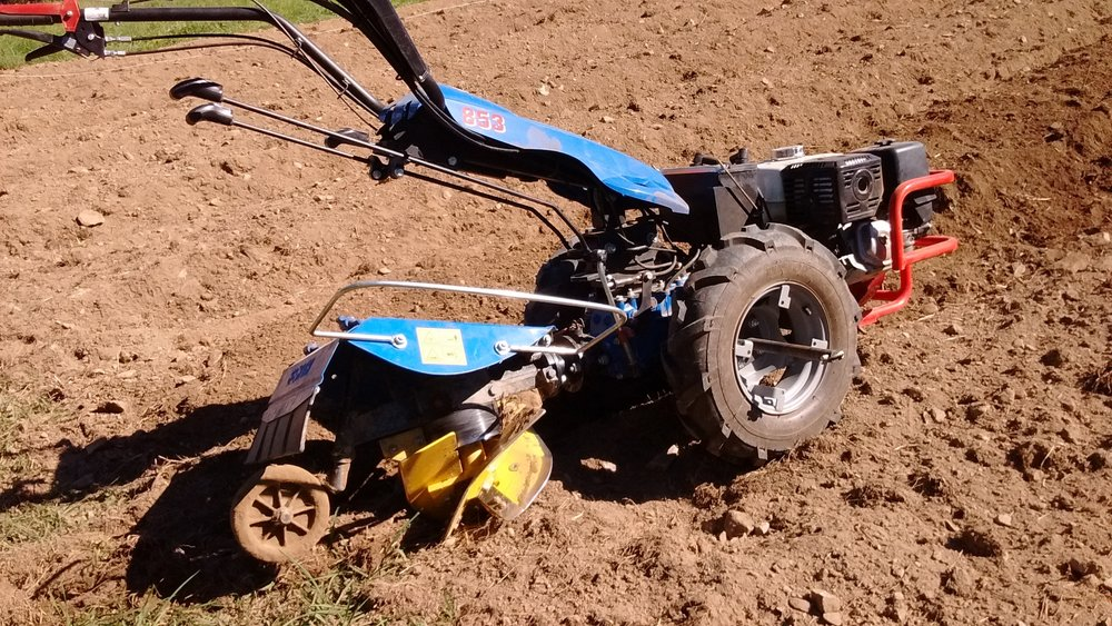 Utilizing the BCS 2-wheeled/walk-behind tractor with a Berta rotary plow (both great finds on Craigslist!) implement for creating the permanent raised beds. This tool drills into the soil and ejects the soil to the right side of the machine - thus creating a hill and furrow. (September 9, 2016)