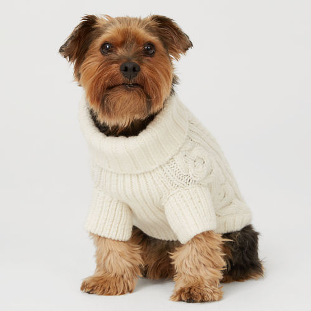 27 Gwinny Dog Sweater.jpg