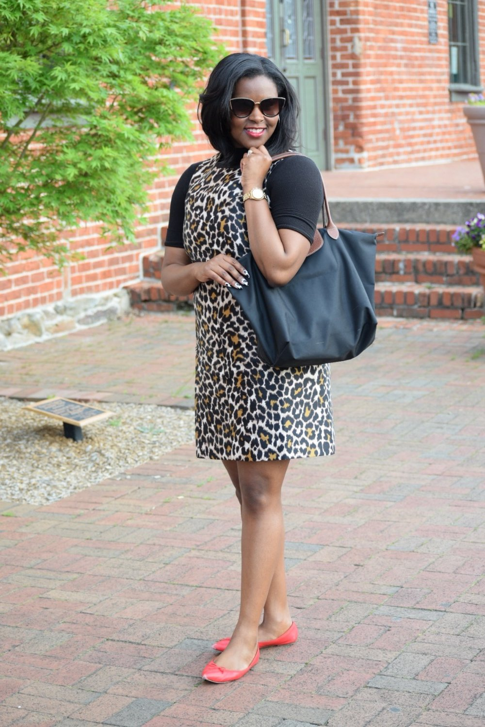 J Crew Cheetah Dress (old, but I love this top  here ),J Crew Flats ( here ), American Apparel Turtleneck (similar  here ), Longchamp Purse ( here ), Nordstrom Sunnies (old)