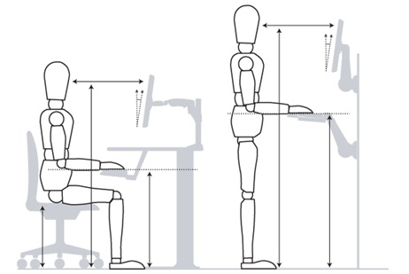We suggest the use a lumbar support temporarily to train her to remove the pressure to the nerves and disc. We ask her take numerous breaks throughout the day. During those breaks, we promote movement based exercises, such as the Cat-Camel illustrated below.