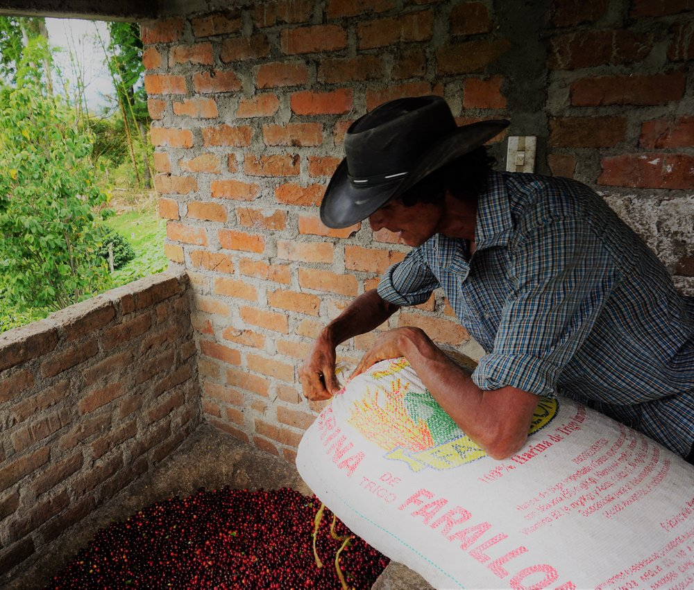 La Estrella Grower with bag (2).JPG