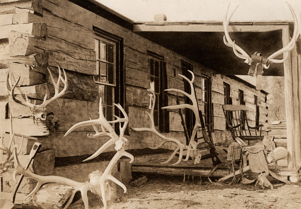 Elkhorn Porch