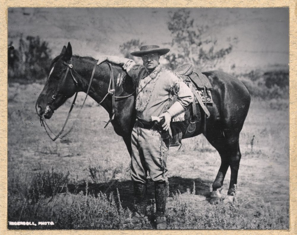 Theodore Roosevelt 1884