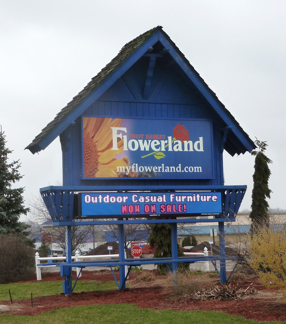 Flowerland - Alpine 2.jpg