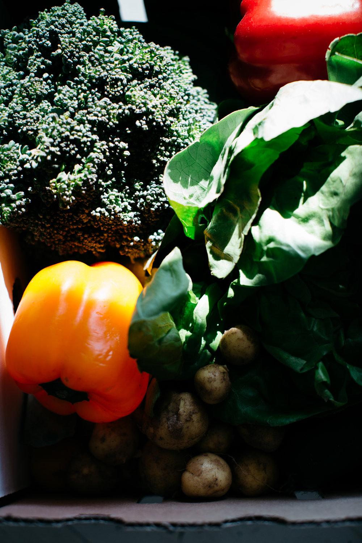 colorado-springs-produce-delivery-4.jpg