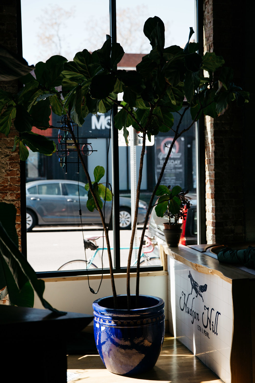 hudson-hill-coffee-tour-fortitude-and-finn-23.jpg