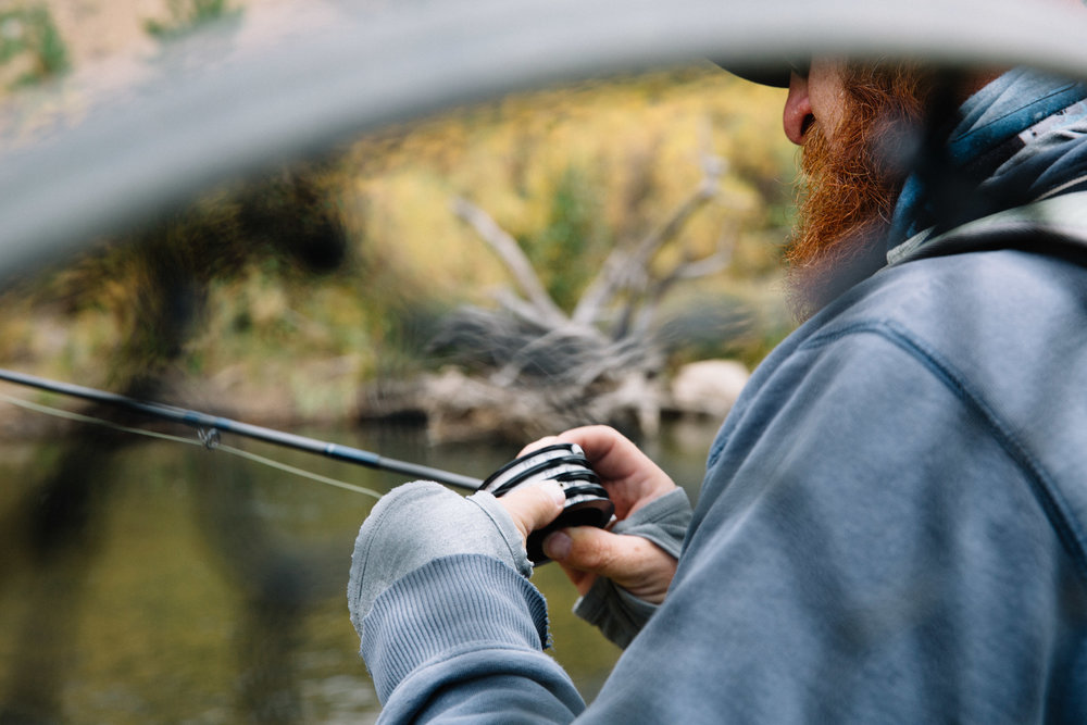 fly.fishing.guide -
