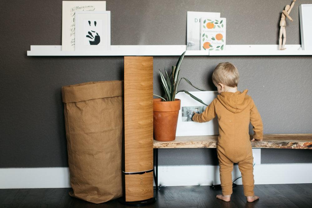 fortitude-and-finn-home-design-5.jpg