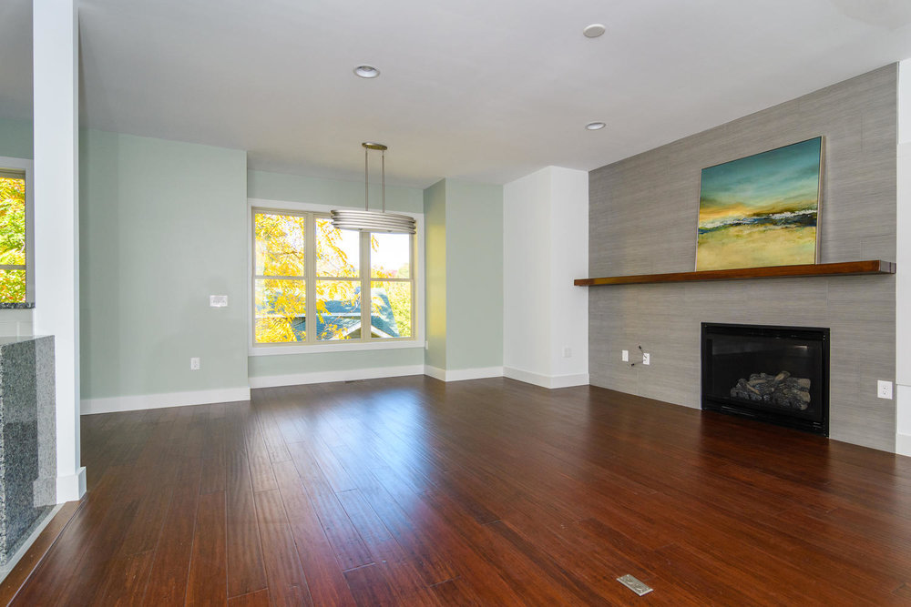 50 Druid Dr Asheville NC 28806-large-006-20-Living Room-1500x1000-72dpi.jpg