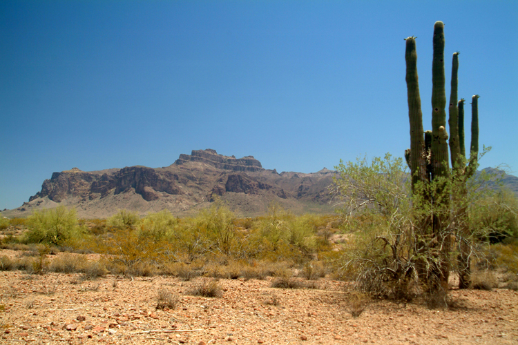 the edge of the Superstition Mountains, Arizona