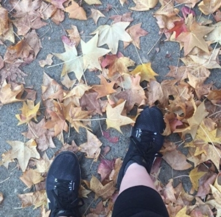 I'll also miss running in my neighborhood during the fall.