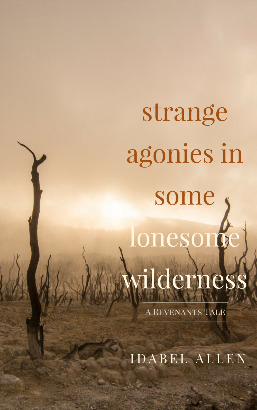 Strange Agonies In Some Lonesome Wilderness