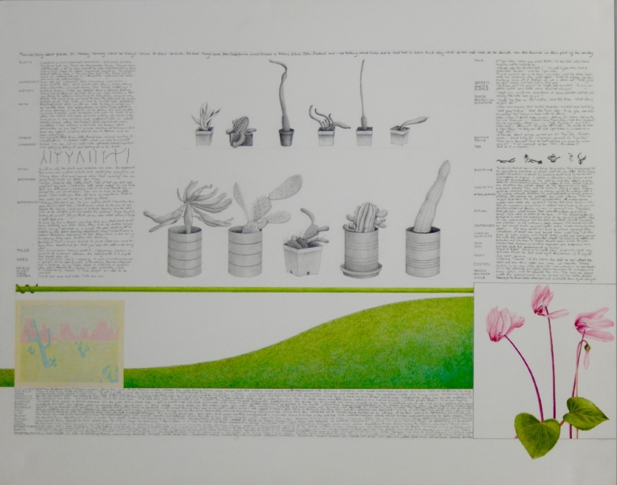 A Story about Plants