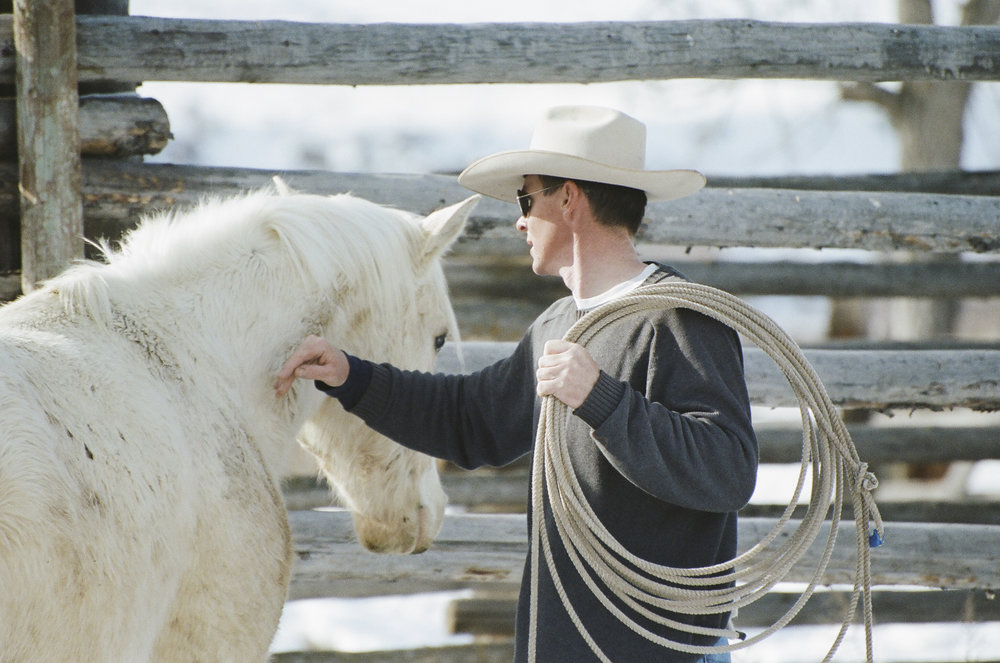 8 -- Shawn with a palomino colt.jpg