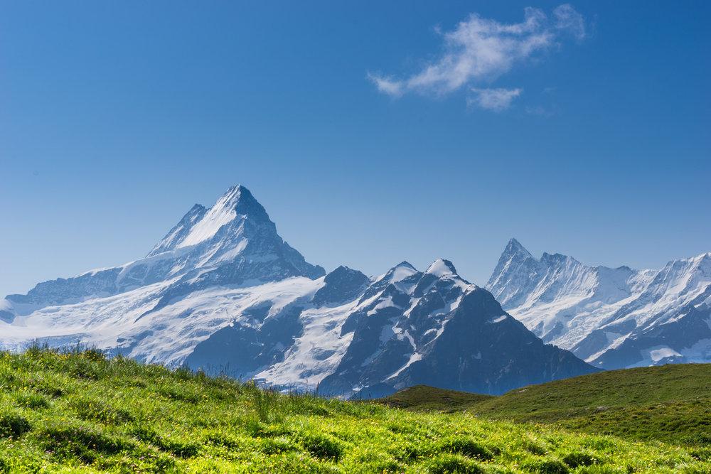 Grindelwald (4 of 25).jpg