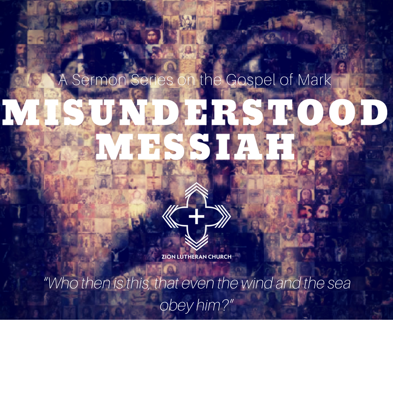 MisunderstoodMessiahSERIES.png