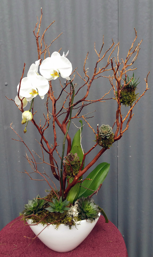 Botanical floral arrangement with white orchids