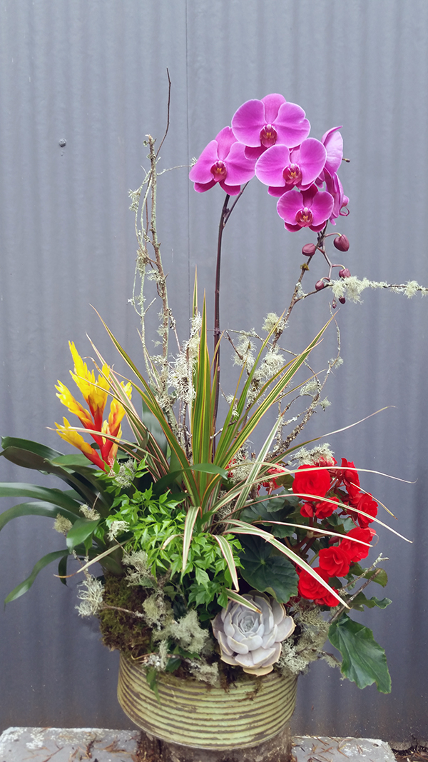Botanical floral arrangement with pink orchid and red flowers