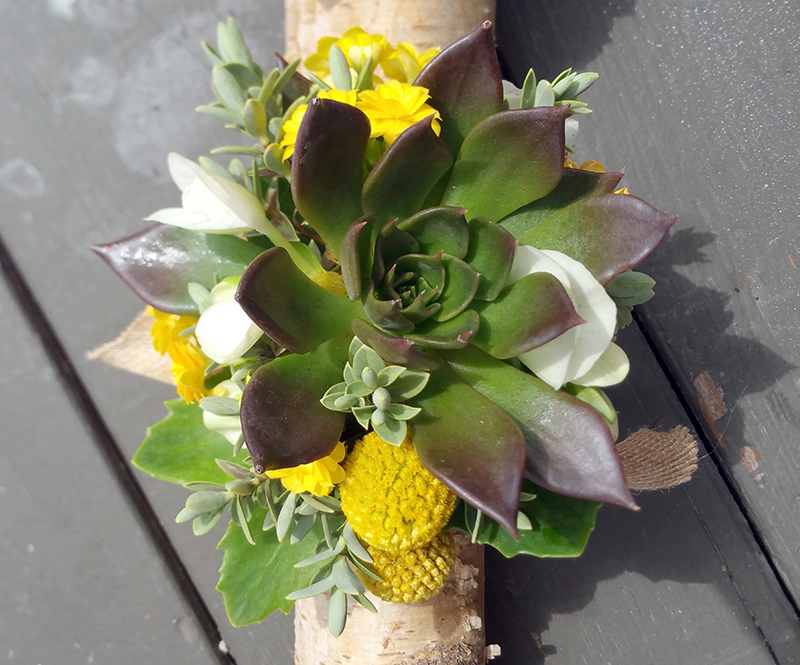 Wedding corsage with succulents plus yellow and white flowers