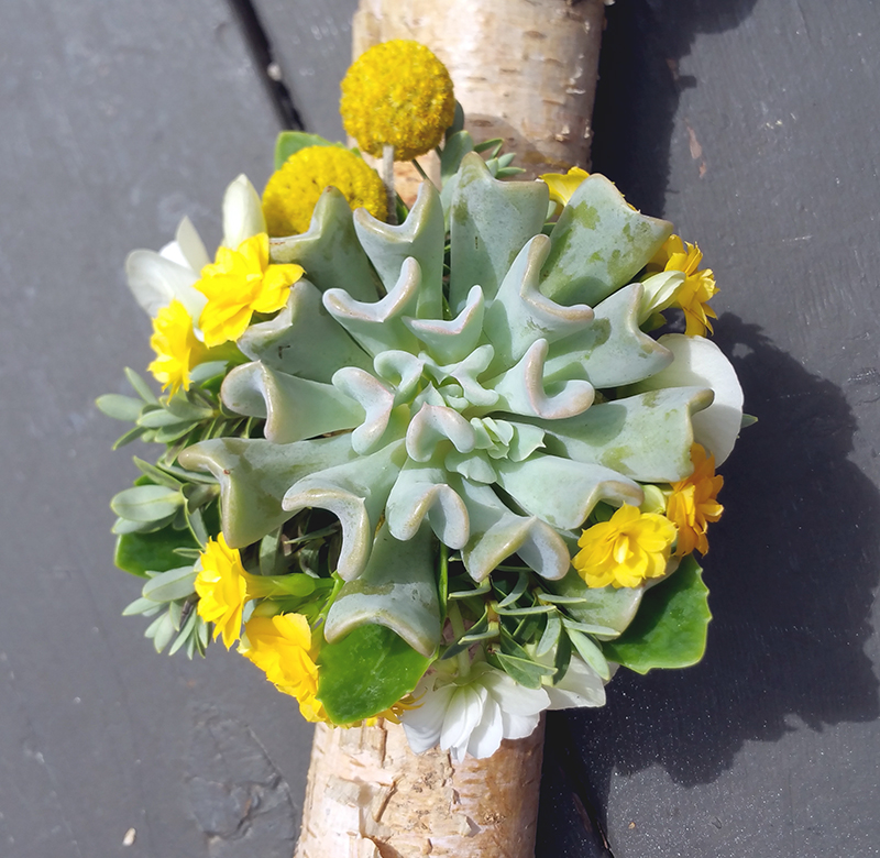 Wedding party flowers with succulents plus white and yellow accents