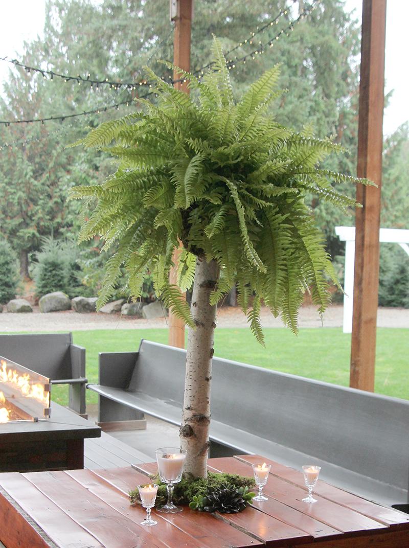 Fern floral design on a birch pedestal