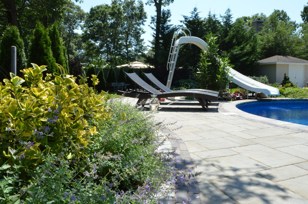 Holbrook, NY swimming pool patio and landscape design