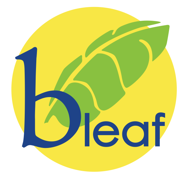 Bleaf natural