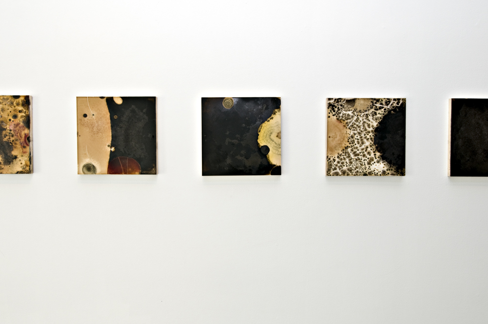 Balci.Selin. Contamination (Overview III) I-X. Microbial growth on board.12x12 in.2011.JPG