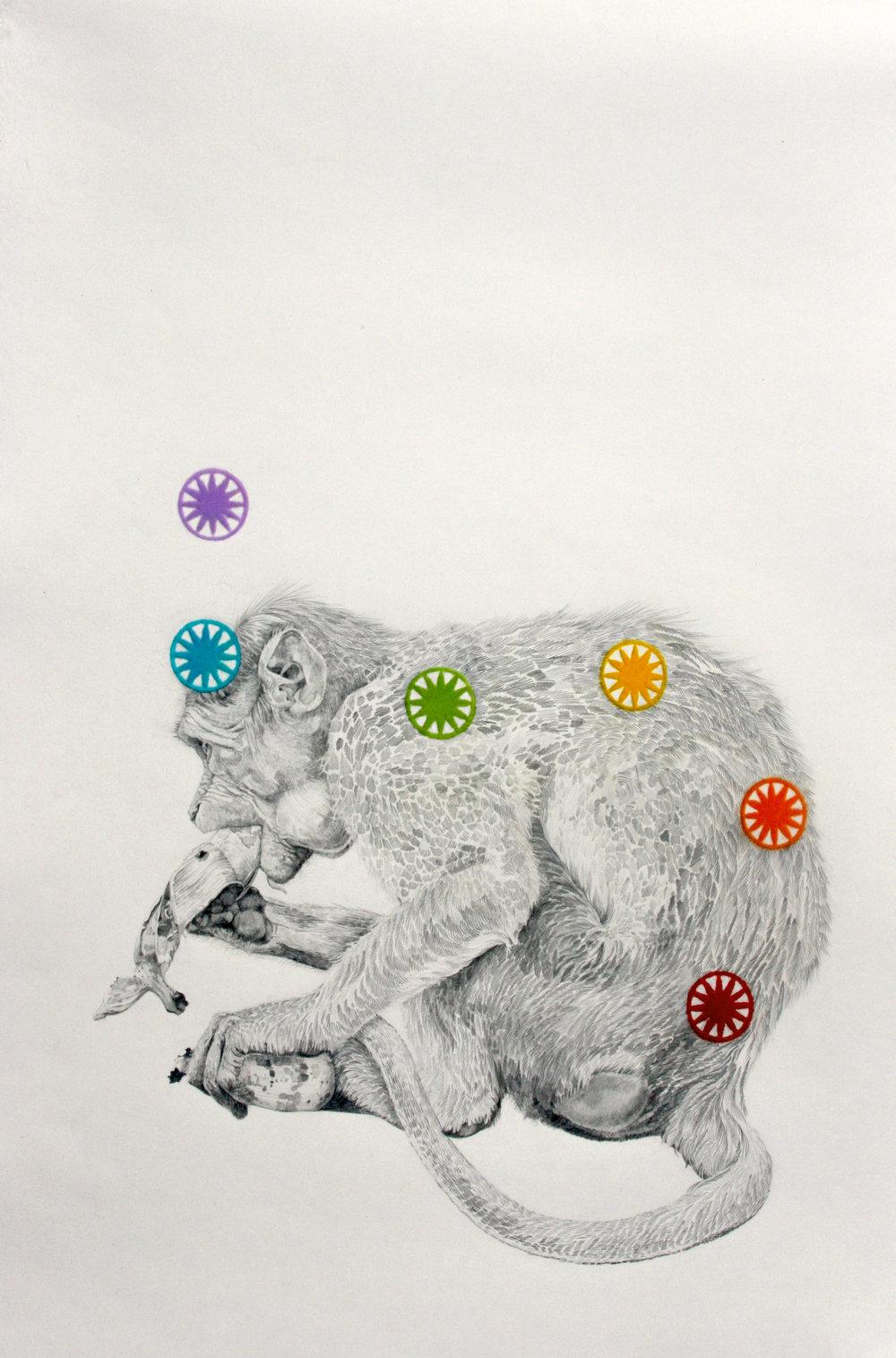 3.Monkey.American Temple.Mullins.jpg