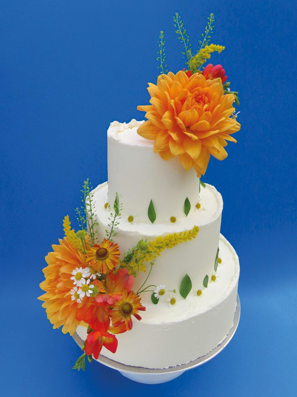 TGB_Cake_3000x4000px_72dpi12.jpg