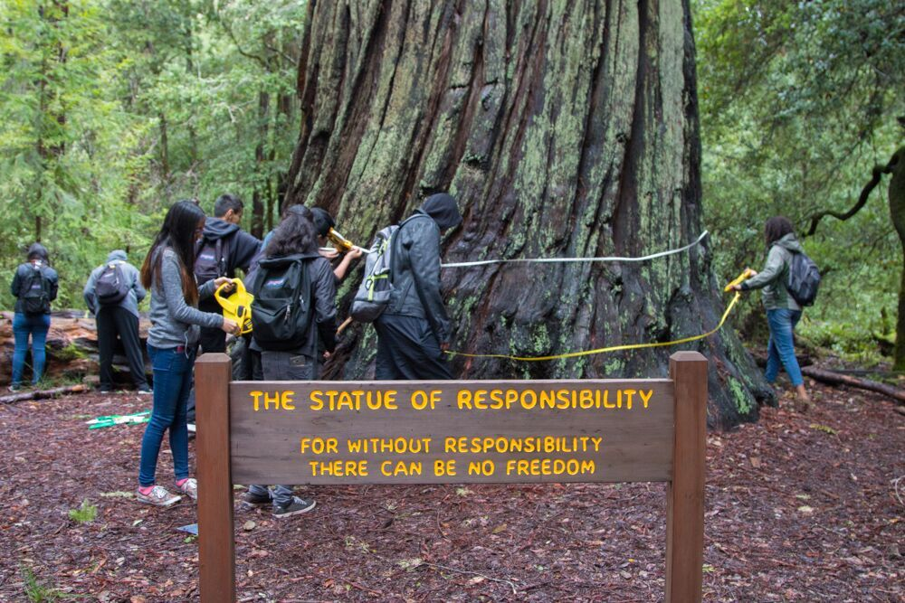 Sempervirens Fund brought students from Andrew P. Hill High School to Big Basin Redwoods State Park to experience the legacy of their school's namesake, and to inspire the next generation of redwood stewards.