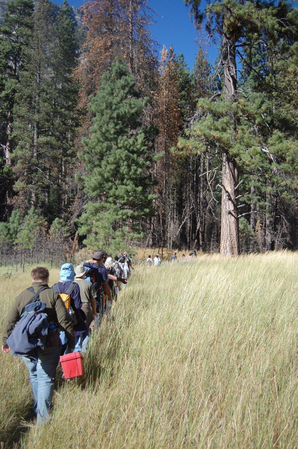 vetical hike.jpg
