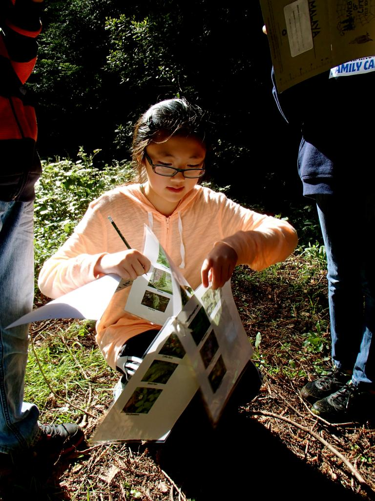 Botany Studies During WOLF School California Living History Program.JPG