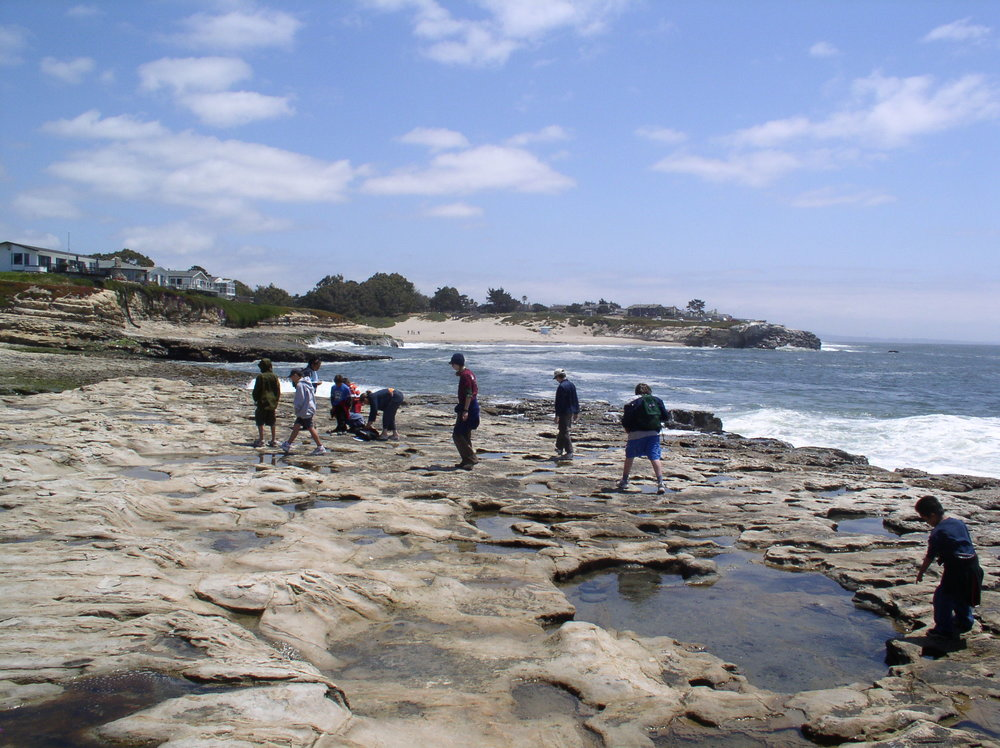 Tide Pool Studies During CA Living History Program.JPG