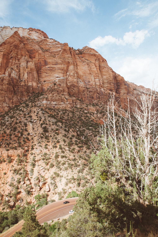 Zion_mountainroadcurve.jpg
