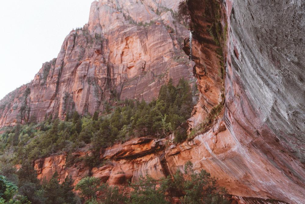 Zion_mountaintop7.jpg