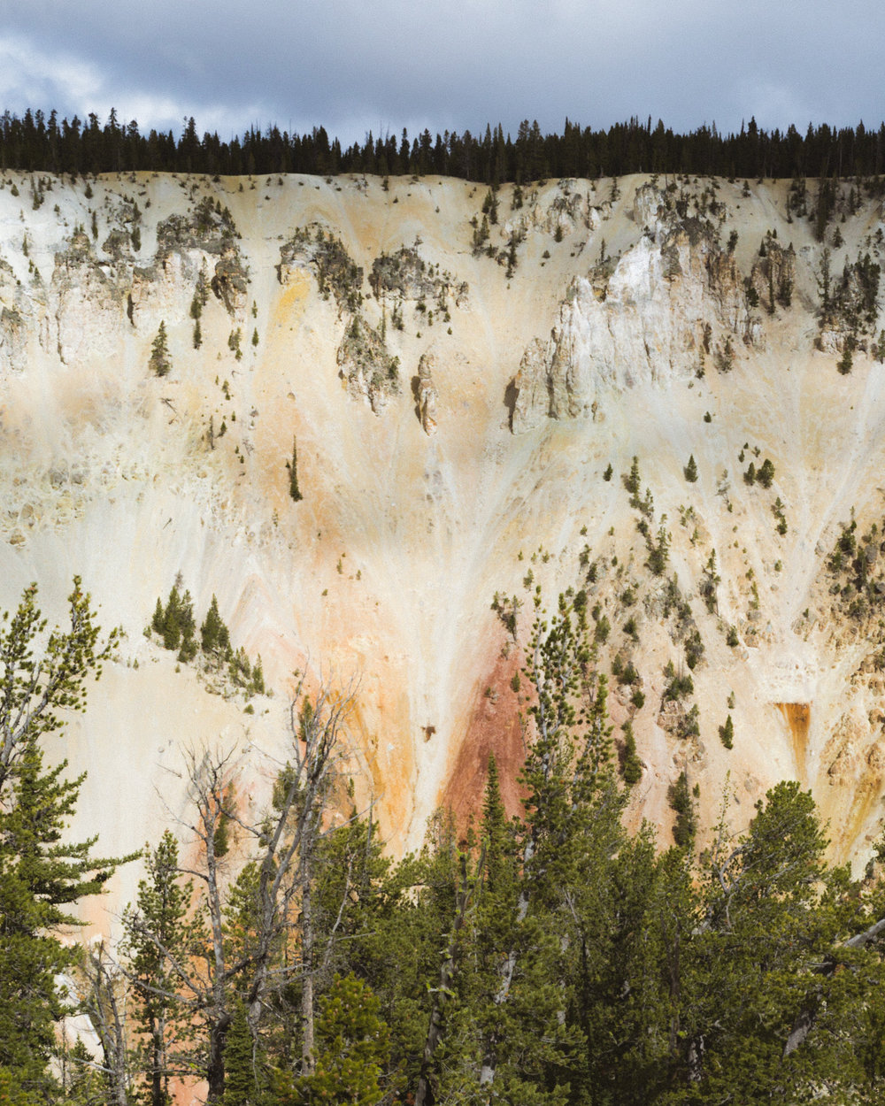 ROADTRIP_YELLOWSTONE_OCTOBER2018 (1 of 1)-9.jpg