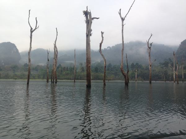 Khao Sok national park. A man made lake in Thailand.