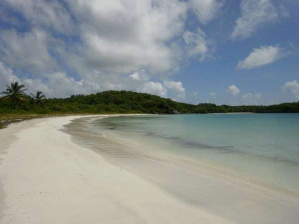 The beautiful clear water and white sand of the island of Vieques.
