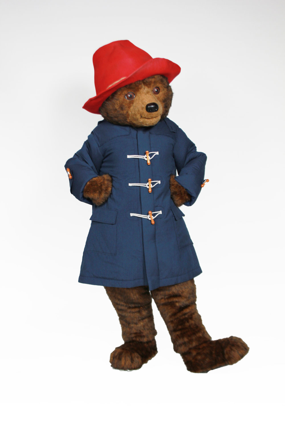 Paddington-Bear-Custom-Mascot1.jpg