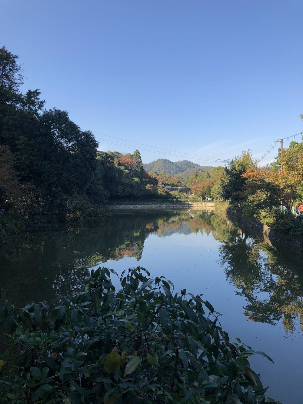 Kyoto pond