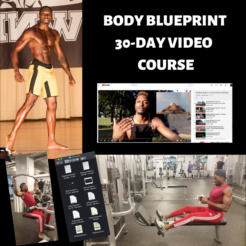 Body Blueprint Thumbnail.png