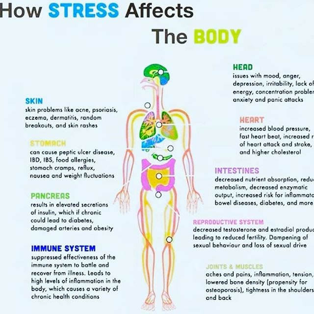 Blood cortisol (stress chemical) has been measured to drop more in the float tank than by taking pharmaceuticals!