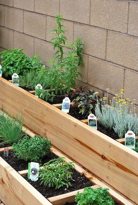 gardening-977938__180.jpg