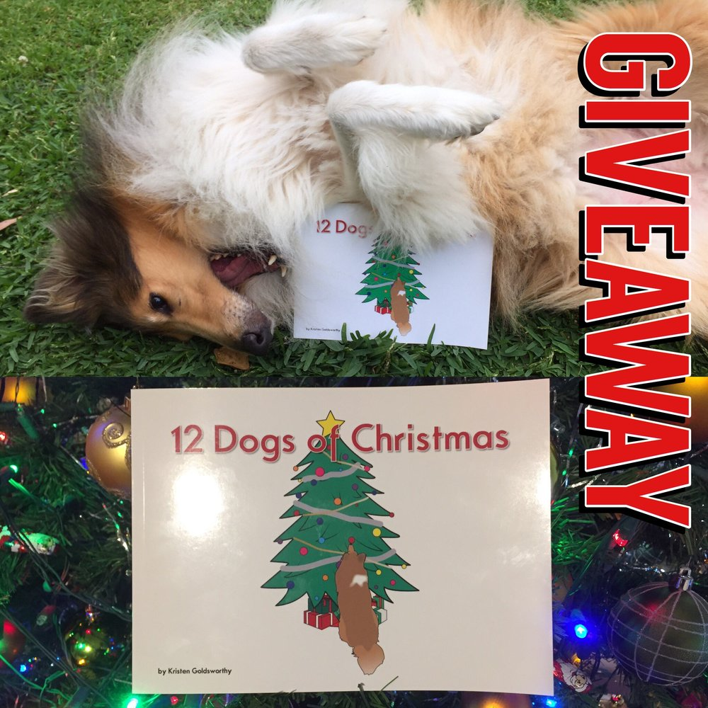 12 Dogs Of Christmas.12 Dogs Of Christmas Giveaway Closed Holly The Collie